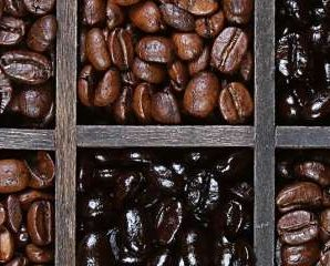 10 Difference between Arabica Coffee Beans And Robusta Coffee Beans