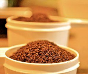 Coffee Grounds Garden – 16  Tricks Coffee Grounds