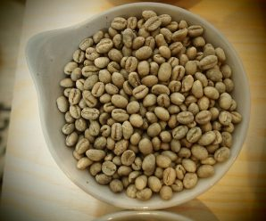 Real green coffee weight loss with green coffee
